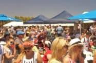 Cape Jaffa Seafood and Wine Festival