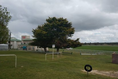 Naracoorte Racing Club-07