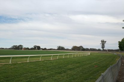 Penola Racing Club-03