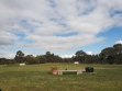 Naracoorte Golf Club-04
