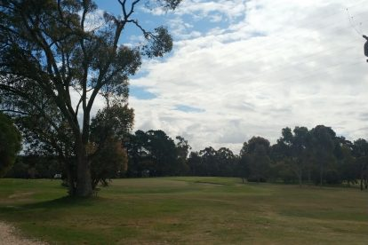 Naracoorte Golf Club-12