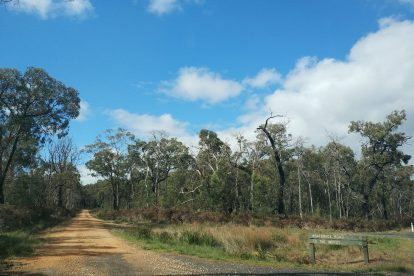 Lower Glenelg National Park-02
