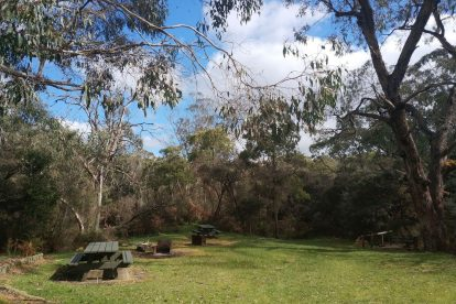 Lower Glenelg National Park-06