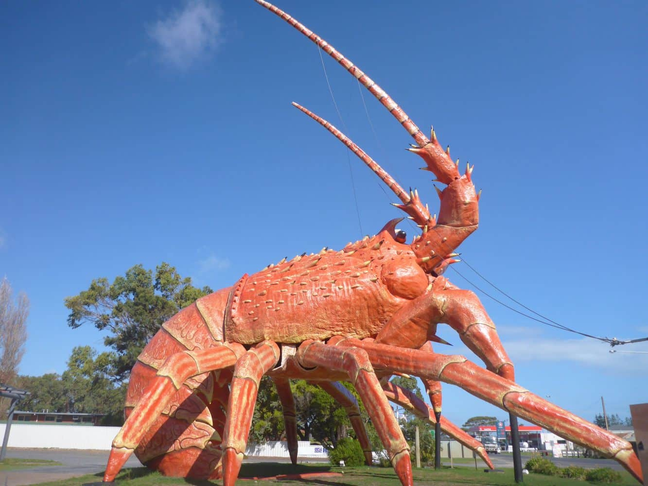 The Big Lobster 04
