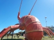 The Big Lobster-06