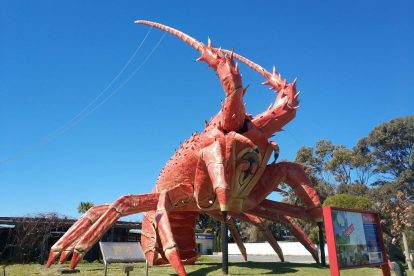The Big Lobster-11