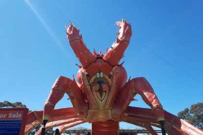 The Big Lobster-12
