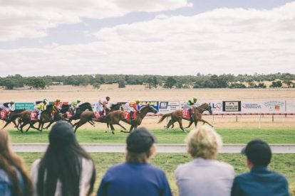 Naracoorte Cup 1