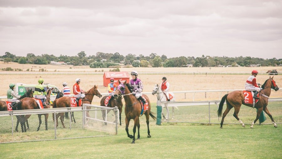 Naracoorte Cup 3