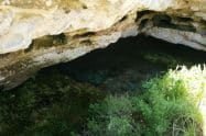 The Green Waterhole