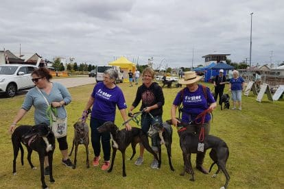 SEAWL Bendigo Bank Paws Walk