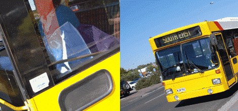 Mount Gambier Buses
